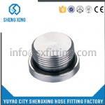 HYDRAULIC BSP MALE HOLLOW HEX PLUG